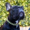black french bulldog christmas jewelry collar
