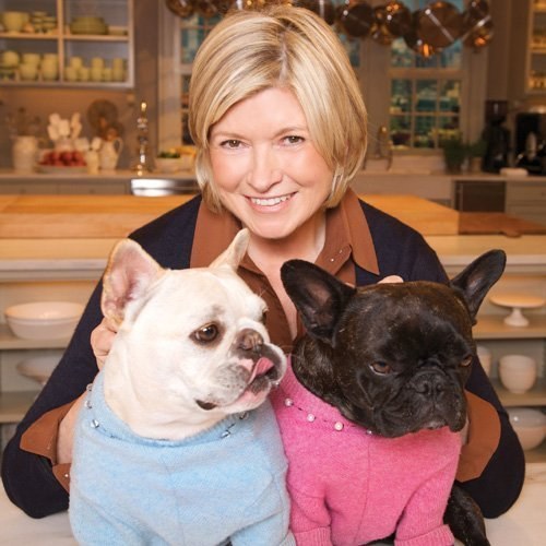 dog-clothing-martha-stewart-french-bulldogs