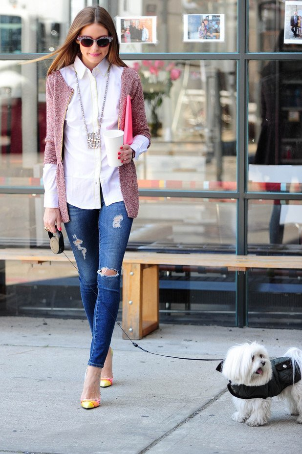 dog-clothing-olivia-palermo
