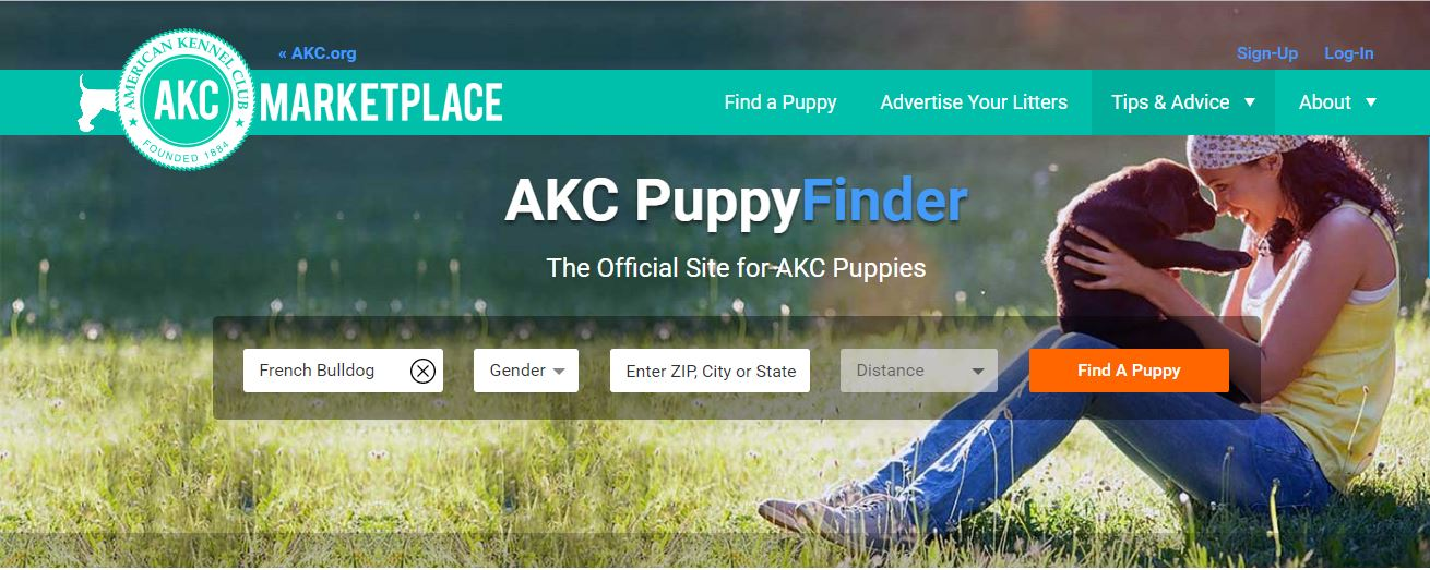 AKC Puppy Finder