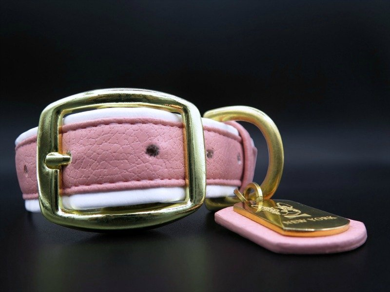 dog collar leather pink