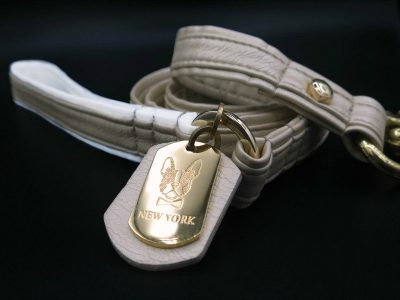 gold leather dog leash