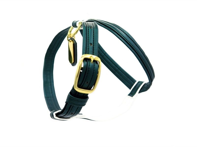 Green french bulldog harness