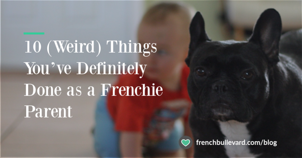 Frenchie with baby