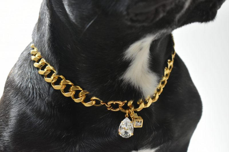 swarovski pendant dog accessories