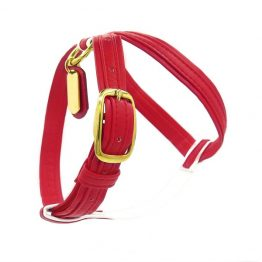 red french bulldog harness